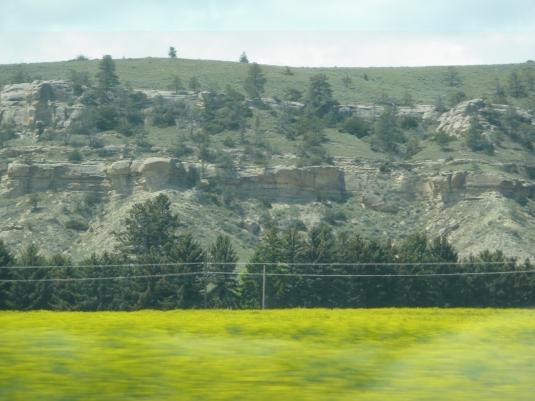 Montana 14