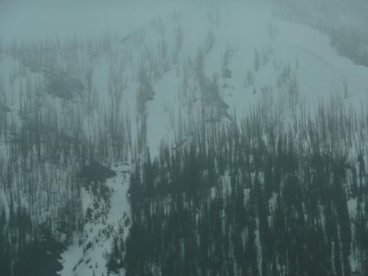 Yellowstone 11